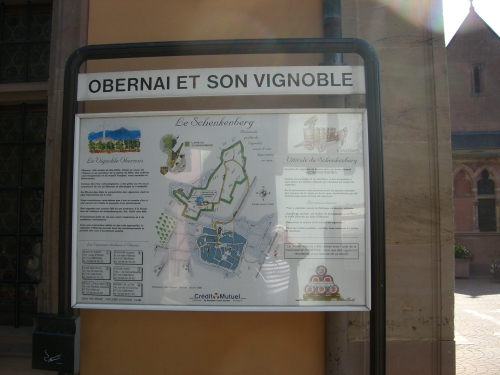 Obernai and its Vineyards - Local Food And Wine photo by Paige Donner c. 2011