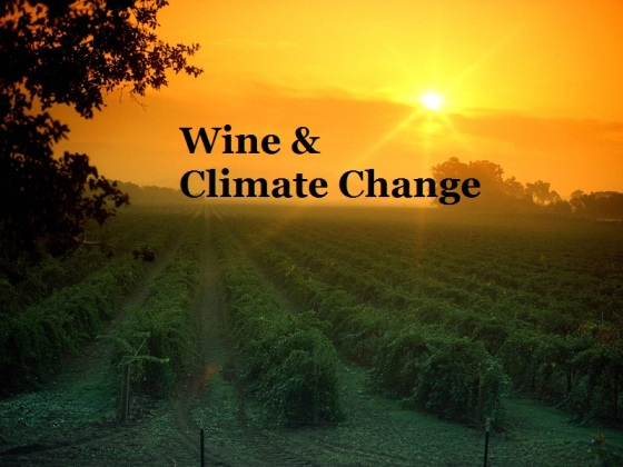 http://www.indiegogo.com/wineandclimatechange