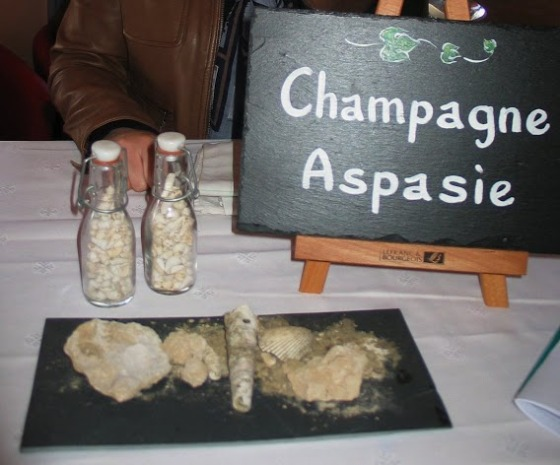 Terroirs et Talents Champagne 2013 c. Paige Donner