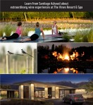 vinesofmendoza resort