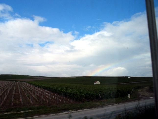 A rainbow over the Champagne vineyards of Avenay. As seen from the train window during harvest 2014. Photo copyright Paige Donner.