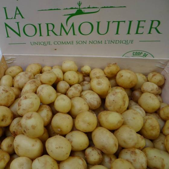 Early potatoes from the Ile de Noirmoutier - a feverishly awaited seasonal delicacy in France!