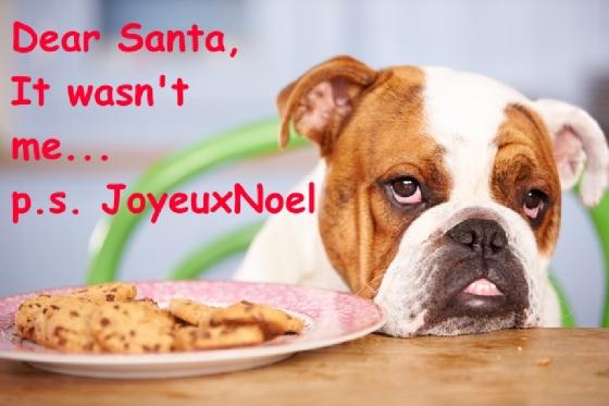 Joyeux Noel_chocolate dhristmas